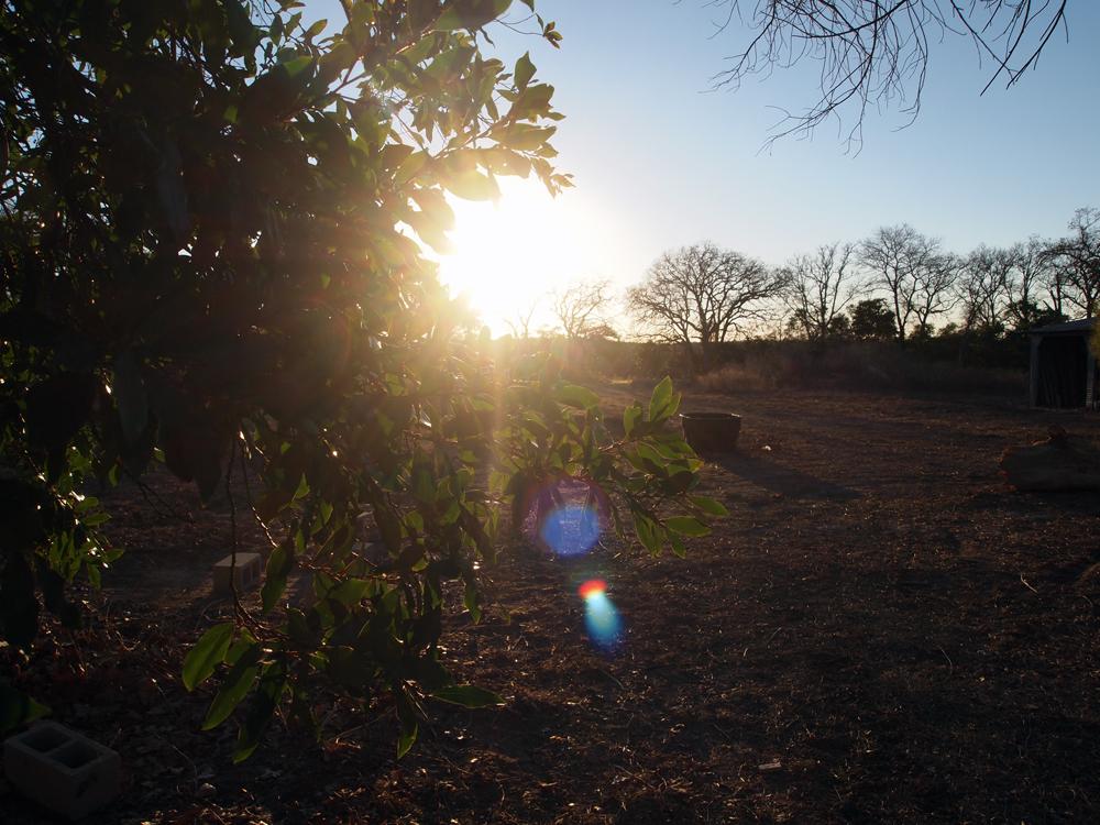 blog-land
