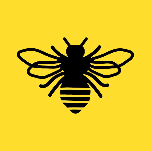 honey-bear-digital-icon